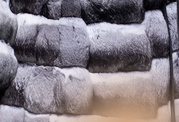 Шубы из шиншилл в Стамбуле - фото №2